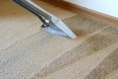 Carpet-5